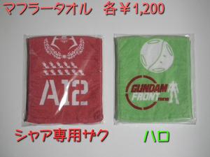 GFT2012W_1014.jpg